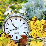 Eine Uhr im Herbstlaub